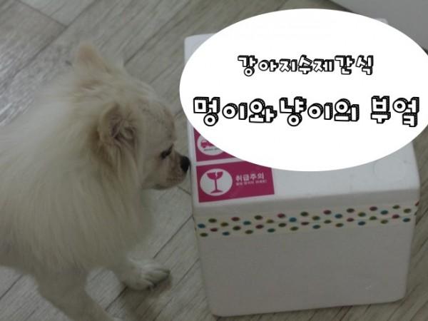 애완견이_좋아하는_강아지수제간식_멍이와냥이의부엌.JPG